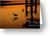 Silhouettes Greeting Cards - Egrets at Dusk Greeting Card by Dean Harte