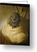 Aristocracy And Royalty Greeting Cards - Egyptian Pharaoh Mummy Merenptah, Cairo Greeting Card by Kenneth Garrett