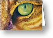 Feline Greeting Cards - El Gato Greeting Card by Brian  Commerford