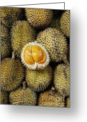 Durian Greeting Cards - Elai Greeting Card by Antoni Halim