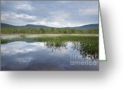 Grafton County Greeting Cards - Elbow Pond - Woodstock New Hampshire Greeting Card by Erin Paul Donovan