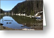 Eleanor Greeting Cards - Eleanor Lake in Yellowstone National Park Greeting Card by Louise Heusinkveld