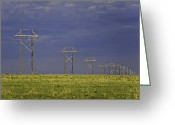 Best Sellers Greeting Cards - Electric Pasture Greeting Card by Melany Sarafis