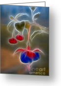 Fushia Greeting Cards - Electrifying Fuchsia Greeting Card by Susan Candelario