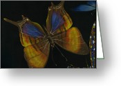 Elena Yakubovich Painting Greeting Cards - Elena Yakubovich - Butterfly 2x2 top left corner Greeting Card by Elena Yakubovich