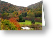 Paper Images Greeting Cards - Elk Country Pennsylvania Greeting Card by Joshua Bales
