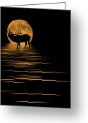 Glowing Moon Greeting Cards - Elk In The Moonlight Greeting Card by Shane Bechler