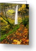 Gorge Greeting Cards - Elowah Autumn Trail Greeting Card by Mike  Dawson