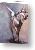 Horse Drawings Greeting Cards - Elusive Equus Greeting Card by Sciandra  