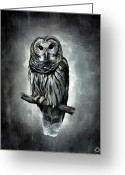 Barn Art Digital Art Greeting Cards - Elusive Owl Greeting Card by Lourry Legarde
