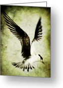 Freedom Digital Art Greeting Cards - Emancipate Greeting Card by Andrew Paranavitana