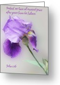 Flower Blossom Greeting Cards - Embossed Iris John 1v16 Greeting Card by Linda Phelps