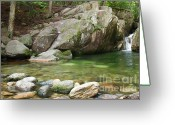 Ecosystem Greeting Cards - Emerald Pool - White Mountains New Hampshire USA Greeting Card by Erin Paul Donovan