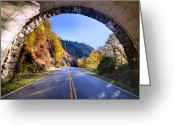 Blue Ridge Photographs Greeting Cards - Emerging Greeting Card by Rob Travis