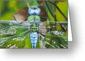Mosquito Greeting Cards - Emperor Dragonfly Greeting Card by Bryan Ory