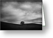 Oak Tree Greeting Cards - Emptiness Greeting Card by Laurie Search