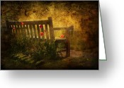 Sad Greeting Cards - Empty Bench and Poppies Greeting Card by Svetlana Sewell