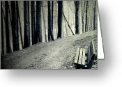Dirt Road Greeting Cards - Empty Bench Greeting Card by Dirk Wüstenhagen Imagery