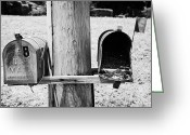 Tenn Greeting Cards - empty old used american private mailboxes one with birdsnest in Lynchburg tennessee usa Greeting Card by Joe Fox