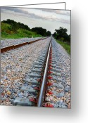 Train Photo Greeting Cards - Empty Railway Greeting Card by Carlos Caetano