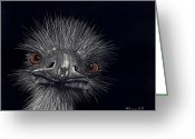 Australian Animal Greeting Cards - Emus In The Morning Greeting Card by Linda Hiller