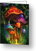 Mushrooms Greeting Cards - Enchanted Evening Greeting Card by Philip Straub