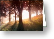 Light Greeting Cards Greeting Cards - Enchanted Meadow Greeting Card by Debra and Dave Vanderlaan