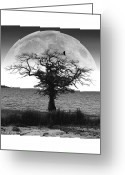Gray-scale Greeting Cards - Enchanted Moon Greeting Card by Brian Wallace
