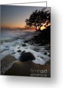 Lahaina Greeting Cards - Encompassed Greeting Card by Mike  Dawson