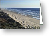 Southern Oregon Photo Greeting Cards - Endless Sand Dune Beach - Southern Oregon Greeting Card by Daniel Hagerman