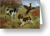 Three Animals Greeting Cards - Energetic English Springer Spaniels Greeting Card by Walter A. Weber