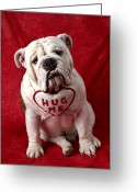 Hug Greeting Cards - English Bulldog Greeting Card by Garry Gay