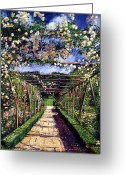 Rose Bushes Greeting Cards - English Rose Trellis Greeting Card by David Lloyd Glover