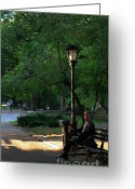 Sunbathing Trees Greeting Cards - Enjoying the Moment in Central Park Greeting Card by Lee Dos Santos