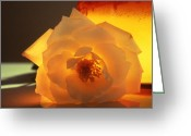 Soft  Glass Art Greeting Cards - Enlightened Greeting Card by Etti Palitz