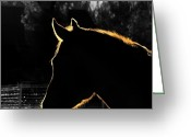 Silhouettes Greeting Cards - Equine Glow Greeting Card by Steven Milner