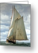Sailboat Greeting Cards - Ernestina Greeting Card by Fred LeBlanc