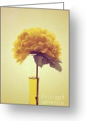 "\""flower Still Life\\\"" Greeting Cards - Estillo - s03-y01r Greeting Card by Variance Collections"