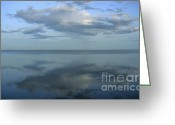 South Of France Greeting Cards - Etang de Vacaress. Camargue. Greeting Card by Bernard Jaubert