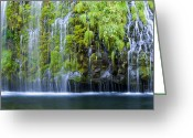 Sacramento River Greeting Cards - Eternal Spring Greeting Card by Loree Johnson