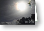 Migrating Bird Greeting Cards - Eternity Greeting Card by Wingsdomain Art and Photography
