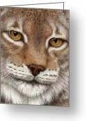 Colored Pencil Greeting Cards - Eurasian Lynx Greeting Card by Pat Erickson
