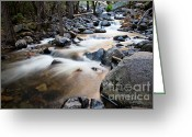 Yosemite Creek Greeting Cards - Evening light Greeting Card by Olivier Steiner