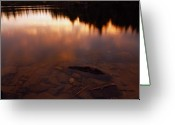 Purple Clouds Greeting Cards - Evening Reflections After a Rainy Day Greeting Card by Larry Ricker