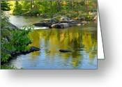 Minnesota Greeting Cards - Evening Reflections at Lower Basswood Falls Greeting Card by Larry Ricker