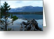 Edith Greeting Cards - Evening Reflections on Edith Lake Greeting Card by Larry Ricker