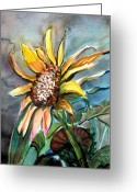 Fall Drawings Greeting Cards - Evening Sun Flower Greeting Card by Mindy Newman