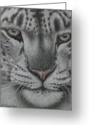 Dawn Jones Greeting Cards - Ever Watchful 2 Greeting Card by Dawn Jones