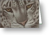 Dawn Jones Greeting Cards - Ever Watchful Greeting Card by Dawn Jones
