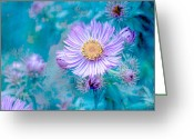Northwest Flowers Greeting Cards - Every Good Gift Greeting Card by Bonnie Bruno